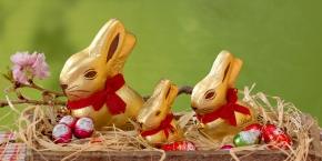 Easter egg hunt(+video)